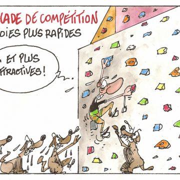 Escalade de compétition