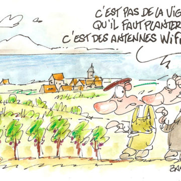 GASTROVAUD – vignes ou wifi?